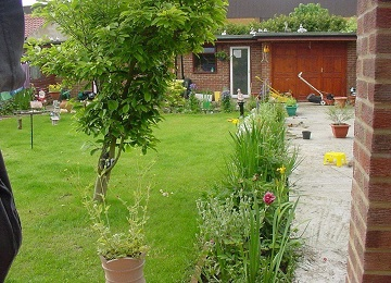 Gardening and Landscaping Services